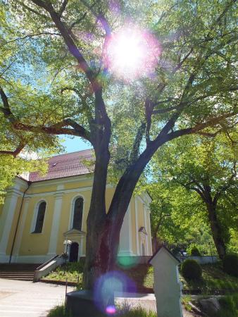 アヴェマリア教会6