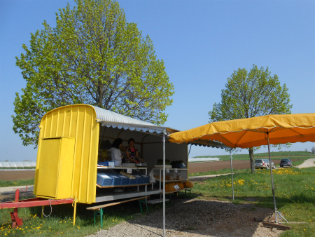 黄色いスタンド1