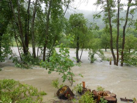 河川の氾濫3