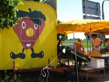 2012年の黄色いスタンド