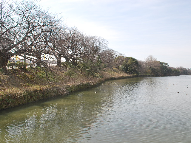 福岡城土塁