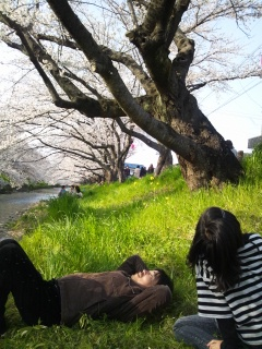gojyougawa.jpg