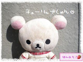 ちこちゃんのチューリップ観察日記★9★にょきにょき~-1