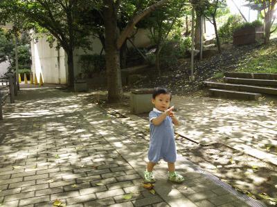 DSC_0334_convert_20120909205444.jpg