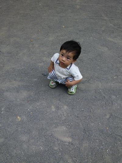 DSC_0389_convert_20120913212600.jpg