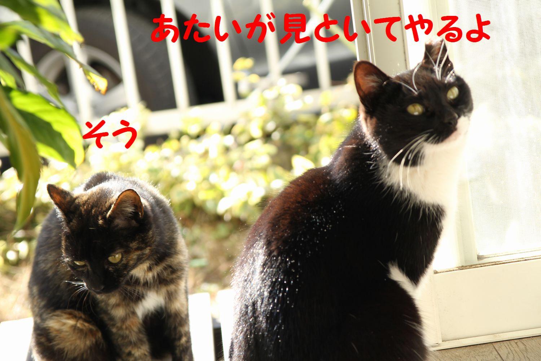 yuta20130126-5.jpg