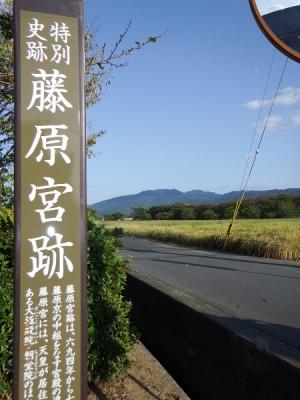 奈良藤原宮跡その1