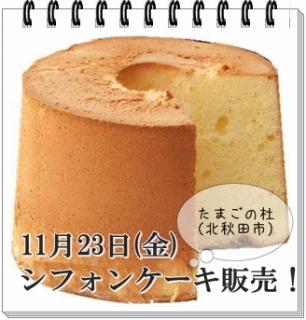 s-シフォンケーキ 11-23