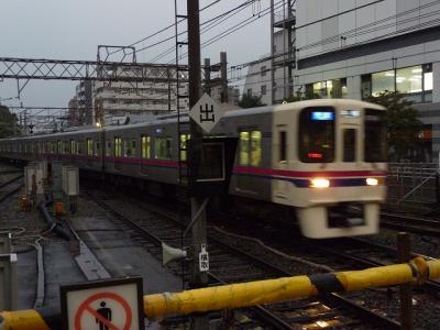 P1040816.jpg
