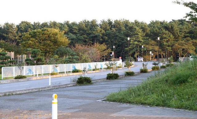 陸前高田54555