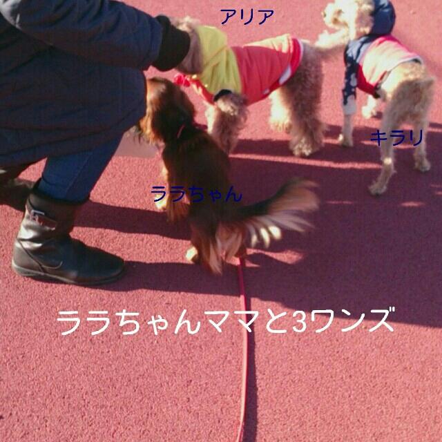 2014121818091355d.jpg