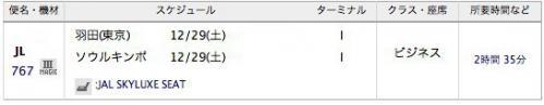 JAL1229_20121229002956.jpg