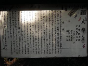 kinomiya2_0001.jpg