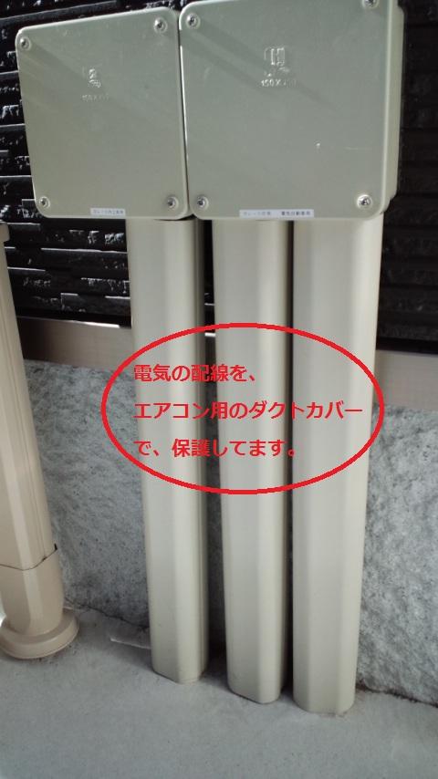 20130125130232637.jpg