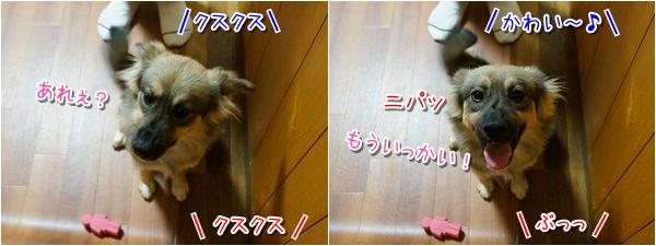 20141205_3.jpg