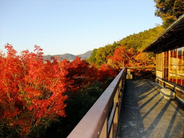翠風閣の紅葉