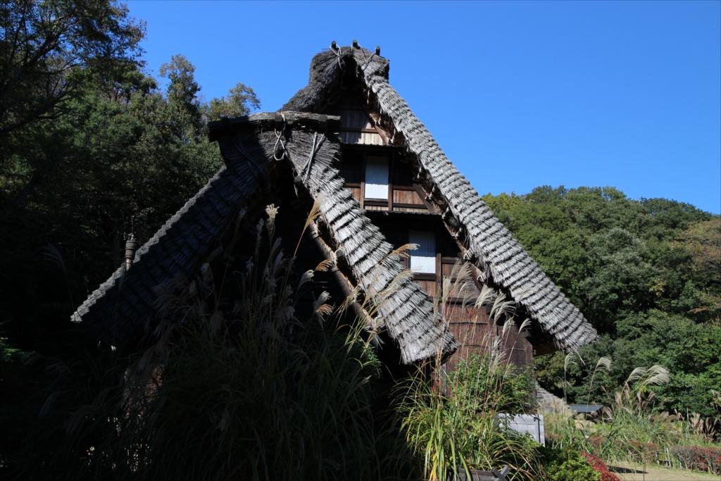 手前の小さな家作は、肥料小屋を兼ねた便所_1