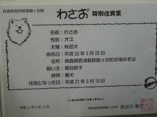 DSC01400.jpg