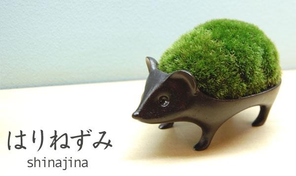 Reshin033-top.jpg