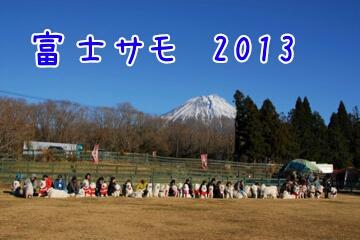 2013121718554.jpg