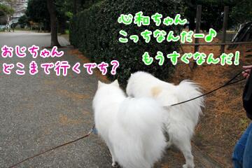 20131228215313.jpg
