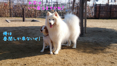 edit_2014-01-23_12-52-25-532.jpg