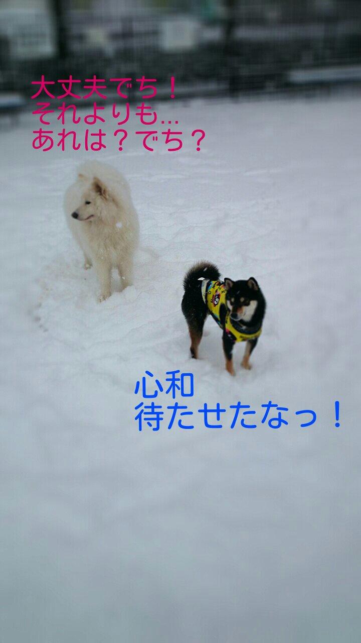 fc2_2014-02-09_10-25-42-717.jpg