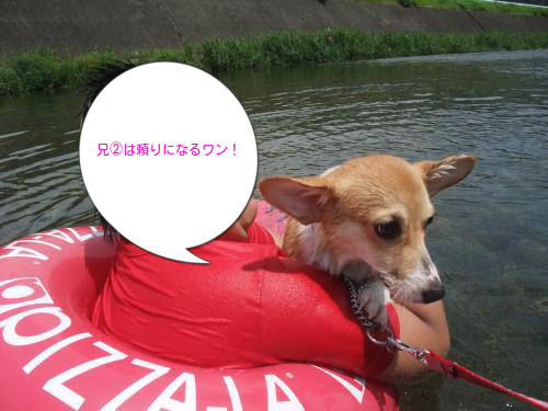 20120816225459eb5.png