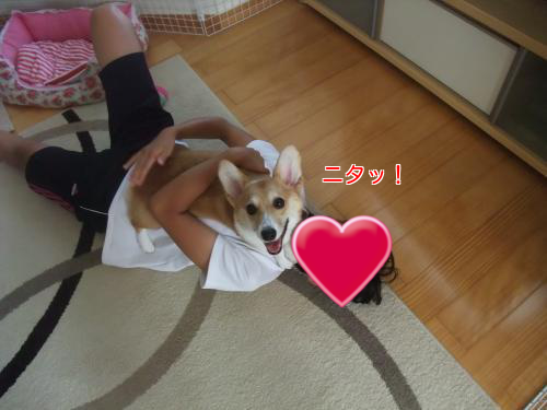 201208202335515c8.png