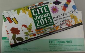 cite japan 2013