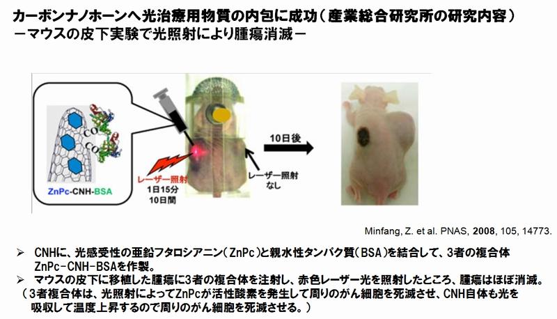 NEC_CNH_Carbon-nano-horn_application2.jpg