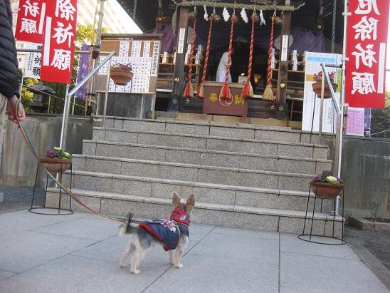 4浅間神社様 0102