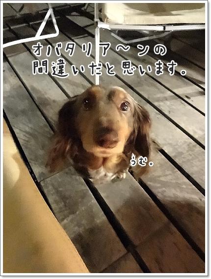 0319_0066.jpg