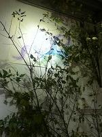 20121206093126ba8.jpg