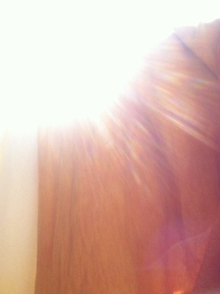 sunn.jpg