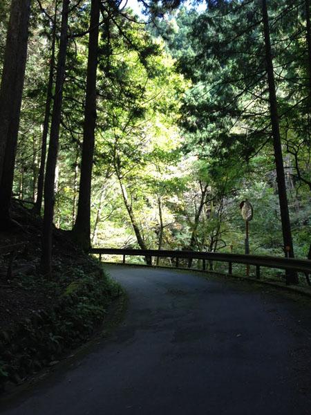 kawanori006.jpg