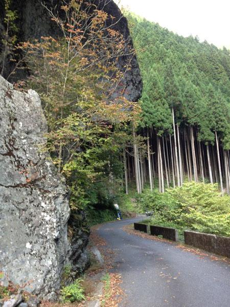 kawanori025.jpg