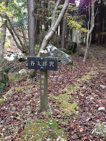 yatarousawa003.jpg