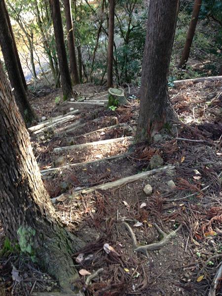yatarousawa032.jpg