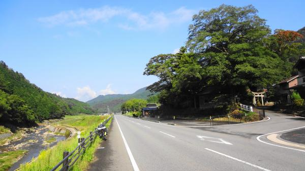 1104国道426出石川沿い_convert_20121015222201