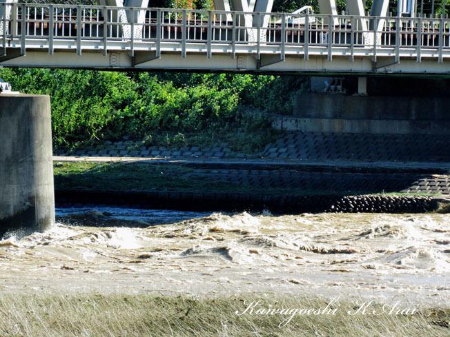 入間川流域