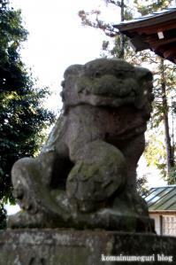 引田八雲神社(あきる野市引田)13