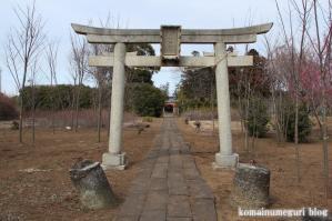 久伊豆神社(さいたま市岩槻区真福寺)2