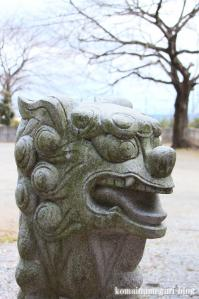 飯塚神社(さいたま市岩槻区飯塚)25