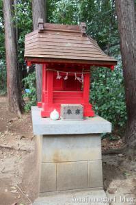 西堀氷川神社(さいたま市桜区西堀)16