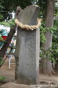 西堀氷川神社(さいたま市桜区西堀)41