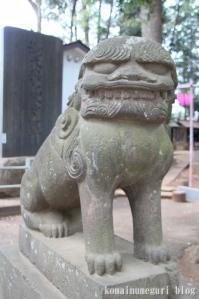 西堀氷川神社(さいたま市桜区西堀)36