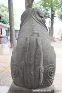 西堀氷川神社(さいたま市桜区西堀)38