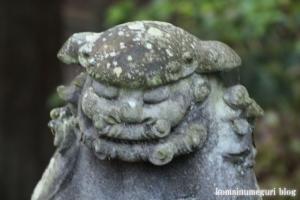 御霊神社(鎌倉市坂ノ下)48