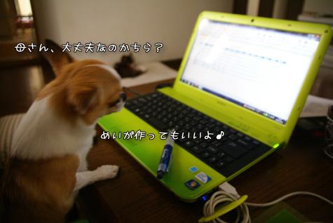 DSC062981018.jpg